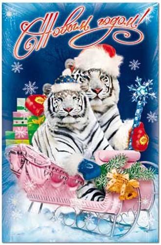 Наступает. открытки с тигром.  Выкладываем.  Новогодние. год Белого тигра.