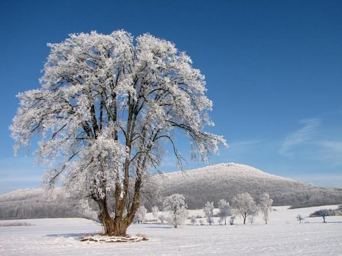 Зимние пейзажи фотоподборка часть 2