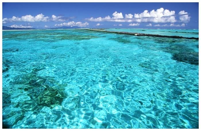 Французская Полинезия 36075