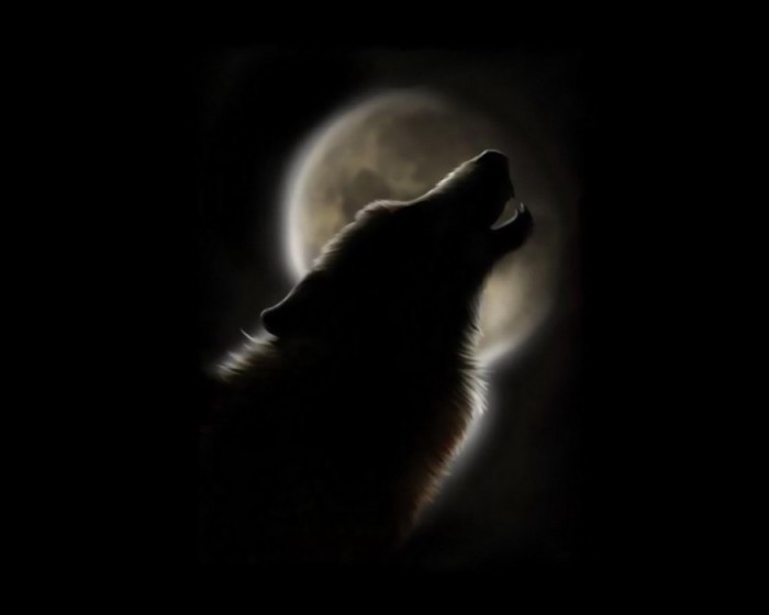 Один...какая пустота.  Мне без тебя хоть волком вой!...на луну.  Почему ты не спишь луна.  И во взгляде.