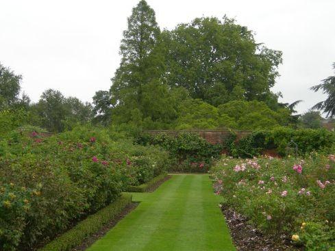 Сад дворца Хэмптон-Кор 44116