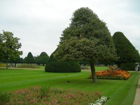 Сад дворца Хэмптон-Кор 11896