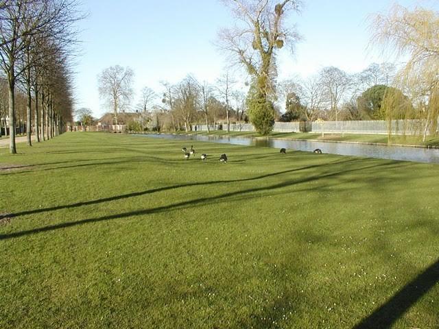 Сад дворца Хэмптон-Кор 17808