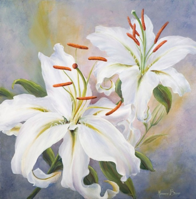 Fragrant Lily
