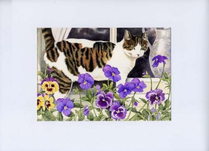Bourton Cat & Pansies