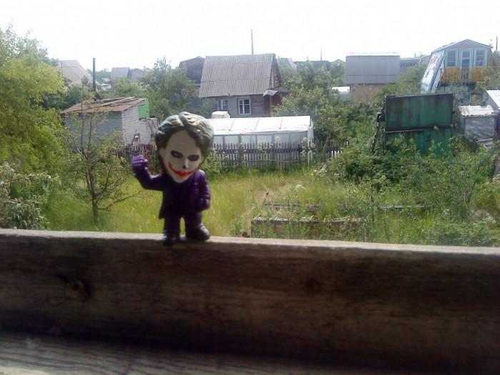 Joker-6 в саду