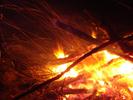 Посмотреть все фотографии серии Зима 2011-2012