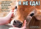 Посмотреть все фотографии серии ::Vegetarian::