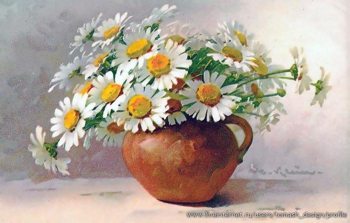 Catharina Klein Daisies in a pot (Ромашки в горшке) .