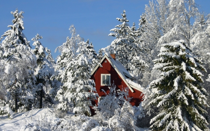 Фотографии природы зима