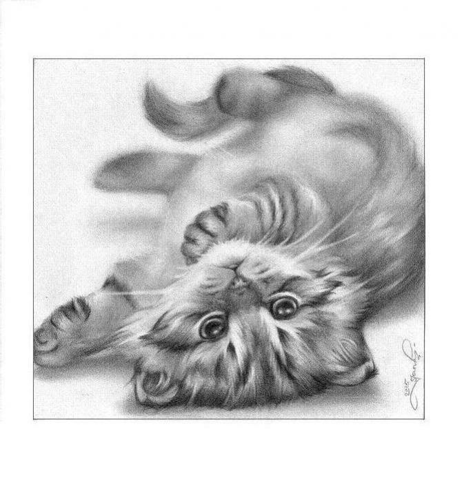 рисунки зверей карандашом: