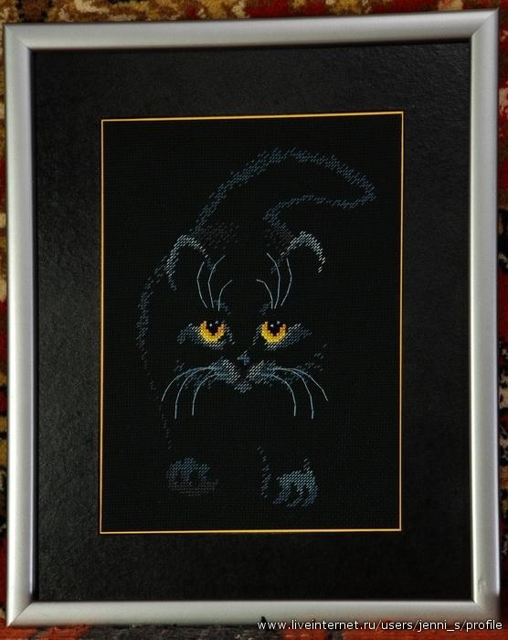 кошка на черной канве вышивка