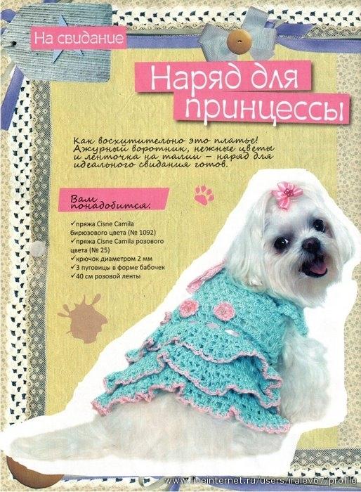 вяжем домашним любимцам.  Уникальное издание на русском языке по вязанию одежды собакам разных пород и размеров.