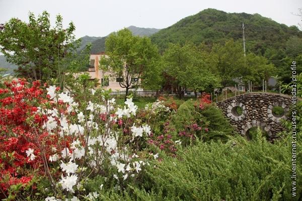 А недалеко мы нашли заброшенный деревенский парк, который понравился гораздо больше, чем чайные плантации.