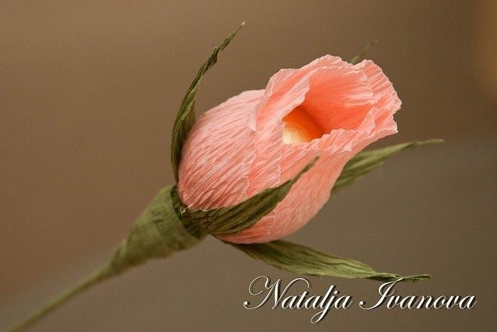 Цветы из гофрированной бумаги своими руками - Мир Позитива 41