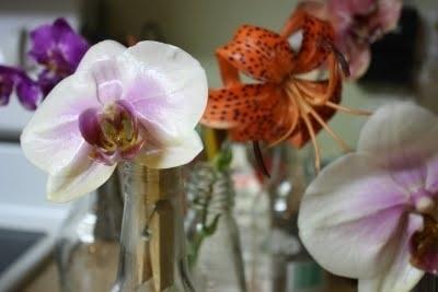 Для этого растопите на водяной бане парафин. Держа цветок шипцами или прищепкой за стебелек, аккуратно опустите его в расплавленный парафин.