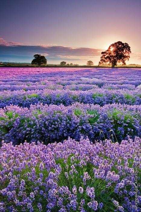 Картинки про красивые места природы