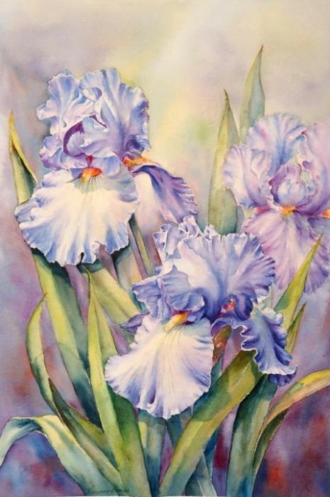 цветок Христа
