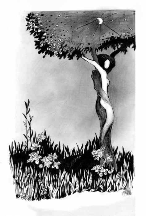 Дерево вечности