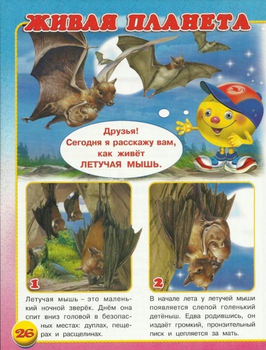 Детям о животных и насекомых 2