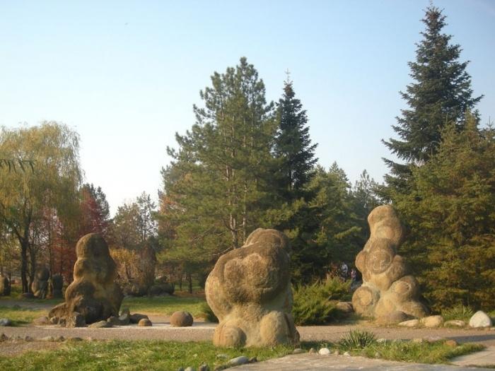 В таких камнях сохранились аммониты