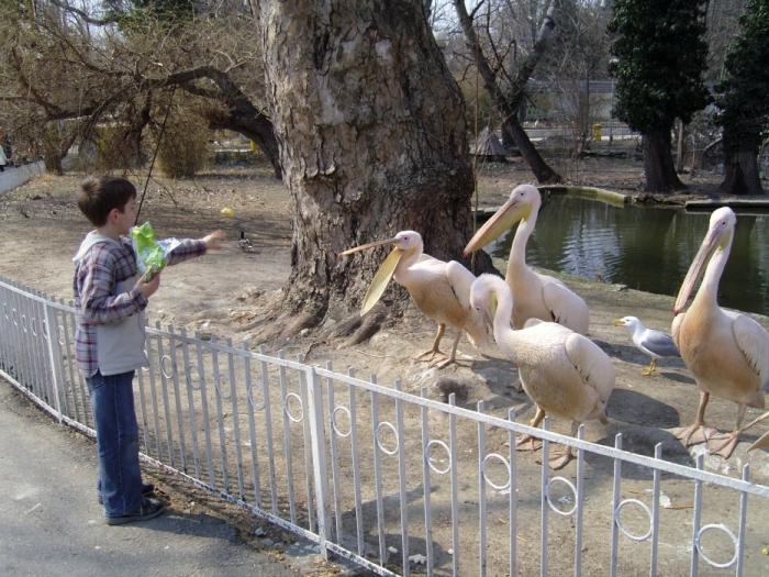 Варненский зоопарк