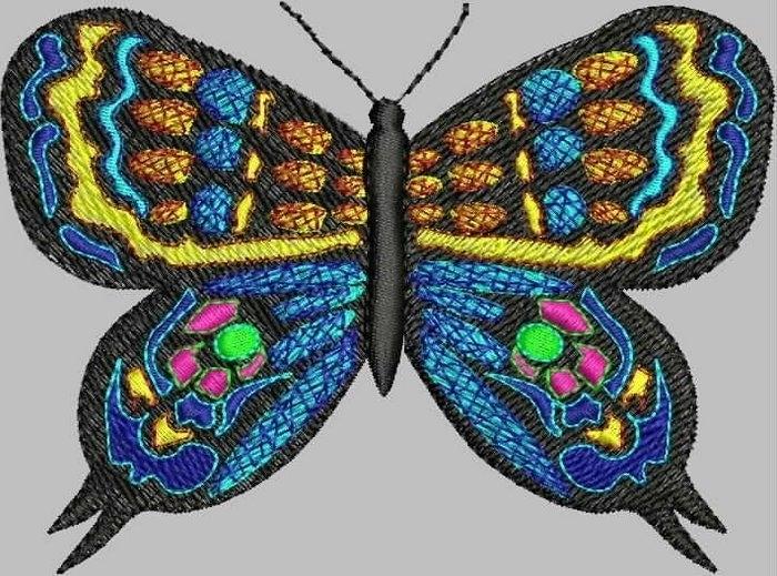 蝴 蝶 - maomao - 我随心动