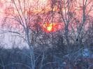 Посмотреть все фотографии серии Снегопад