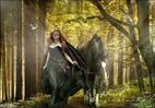 Посмотреть все фотографии серии Эх, вы, кони, мои кони...