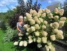 Посмотреть все фотографии серии Мои цветы на даче