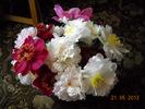 Посмотреть все фотографии серии цветы дачи
