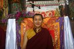 Посмотреть все фотографии серии Лама