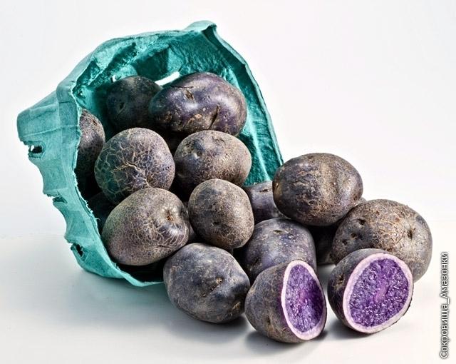 Фиолетовый картофель, ?1.50 за упаковку 1,25 кг
