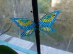 Мои первые бабочки