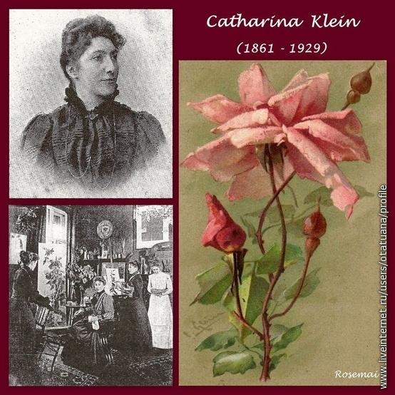 Catharina Klein