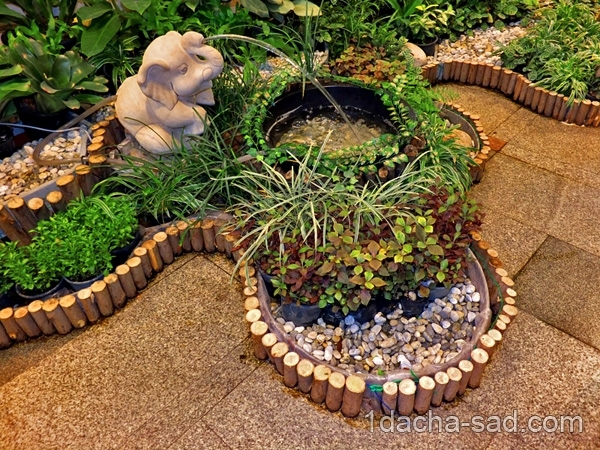 Сад в доме своими руками фото
