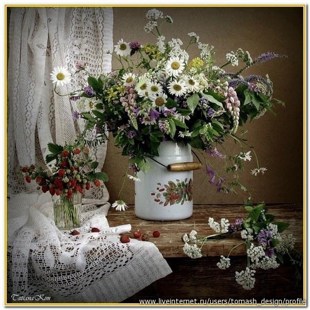 картинки с полевыми цветами: