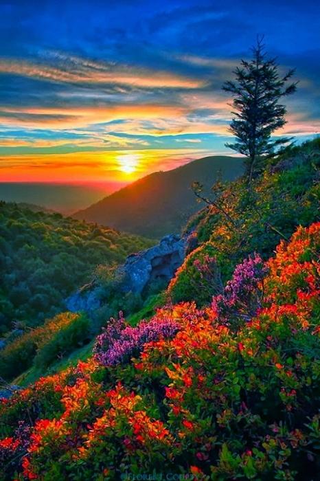 ... buenos días ¡¡¡  tarde y noche ¡¡¡... - Página 3 4970934_mountain_sunset_chai770ne_des_puys_france