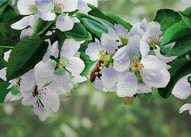 绣品欣赏(花卉) - maomao - 我随心动