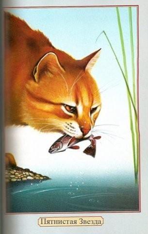 картинки коты воители с именами