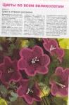 1. Диана Креатив.  Вязаные цветы,часть 2.