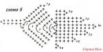 листья связаны крючком по схемам 6 и 7. На схеме 5 представлен лист, в...