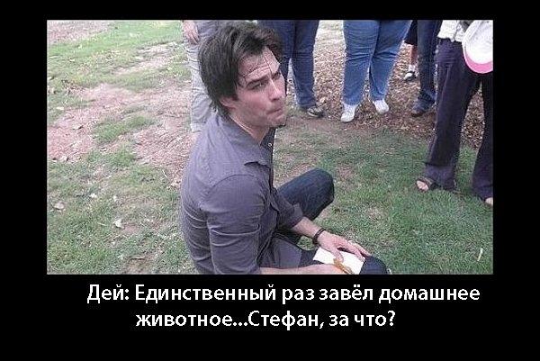 http://img0.liveinternet.ru/images/foto/c/9/apps/2/337/2337840_x_1dbfec41.jpg