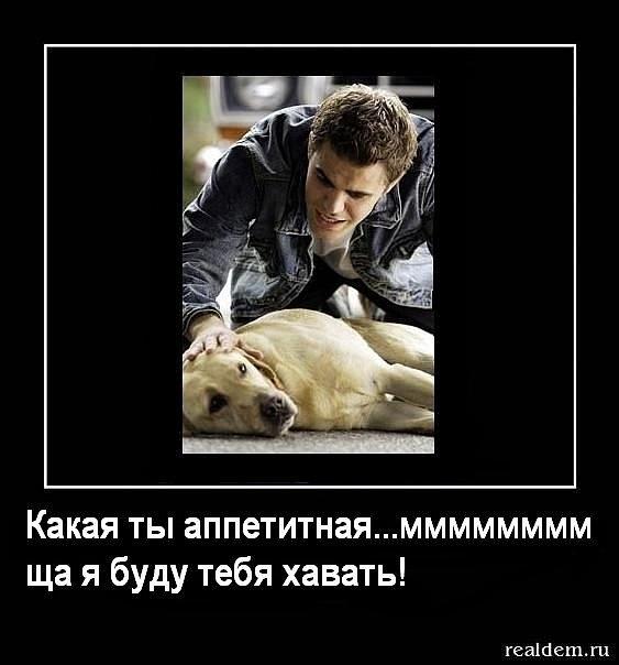 http://img0.liveinternet.ru/images/foto/c/9/apps/2/337/2337972_x_43aa470f.jpg