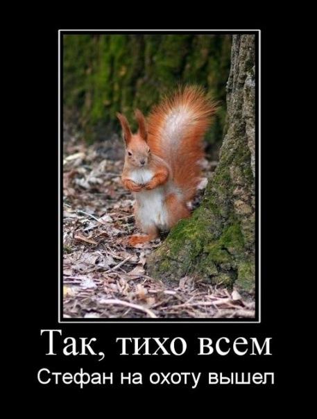 http://img0.liveinternet.ru/images/foto/c/9/apps/2/337/2338052_x_95ad90d3.jpg