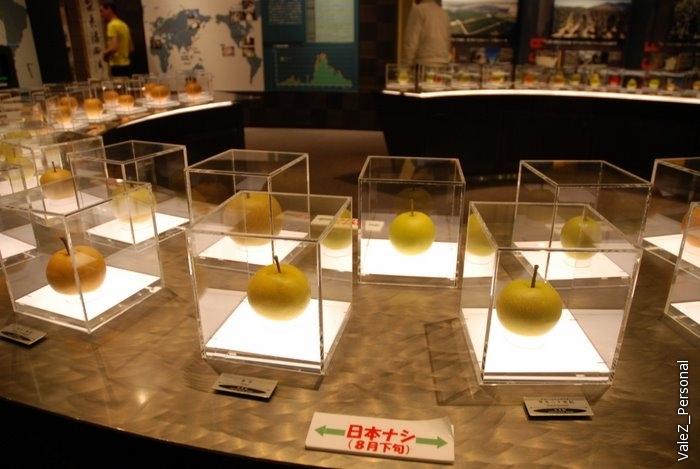 А это - музей груши! Сорт груши