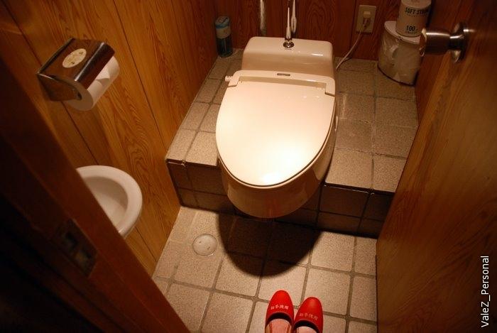 В номере знаменитый говорящий японский унитаз, с подогреваемой крышкой, двумя видами опрыскивания,а также отдельными туалетными тапочками