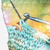 Аватарка для рукодельниц. Вязание спицами и крючком
