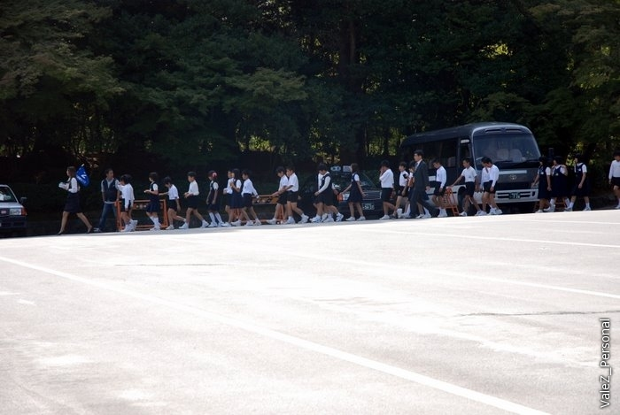 Школьники тоже ходят строго и по порядку, назад и вперед, вверх и вниз
