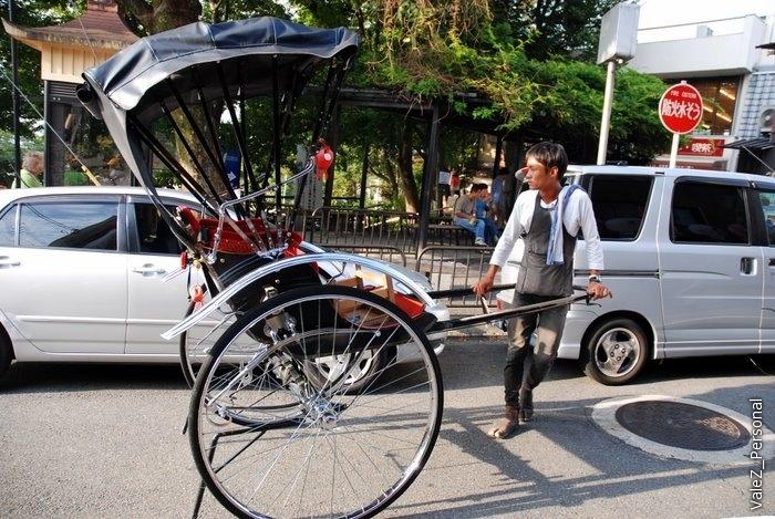 На улице есть даже рикши, правда, говорят, очень дорого и только по небольшому маршруту, на который нельзя повлиять. Но очень красиво